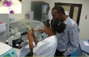Team members training the regional staff on Leishmania culture and smear microscopy