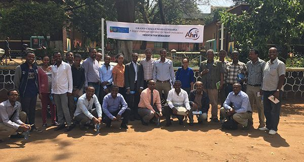 Grand Challenges Ethiopia, in collaboration with Health and Post Graduate directorate of Jimma University Institute of Health (JUIH) held an orientation workshop